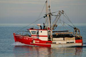 bateau-lady-elise-credit-serge-jauvin-small