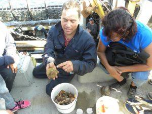 sensibilisation-et-education-pecheur-expliquant-la-peche-a-loursin-lors-dun-camp-de-la-mer-en-2014
